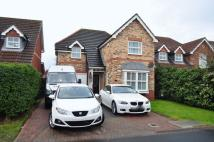 Detached property in SHAWBROW CLOSE HAYDON...
