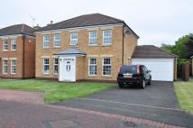 4 bed Detached house in DENEWOOD, FOREST HALL