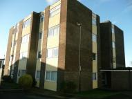 Flat to rent in SHAFTOE COURT...
