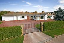 Willowhayne Detached Bungalow for sale