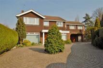 4 bedroom Detached property for sale in Shakletons, ONGAR, Essex