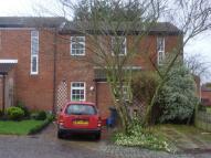 Hopton Road House Share