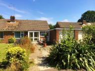 Ockley Way Semi-Detached Bungalow for sale