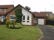 Detached Bungalow in Bordeaux Close, Moorside...