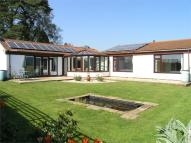 3 bed Detached Bungalow in Wellfield Court...