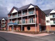 Flat to rent in Cyncoed Gardens, Cyncoed...