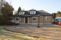 4 bedroom Detached Bungalow in Myrtle Avenue, Lenzie...