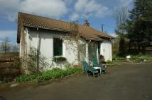 Sunny Dell Cottage Cottage to rent