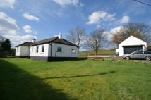 3 bed Bungalow in Auchenreoch holdings...