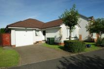 3 bedroom Detached Bungalow to rent in Baldoran Drive...
