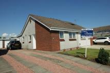 Semi-Detached Bungalow for sale in Newtyle Place...