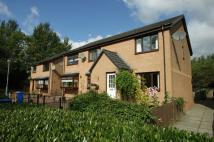 2 bed End of Terrace house in Mccash Place...