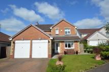 4 bed Detached house in Baldoran Drive...