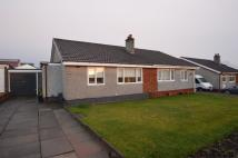 2 bed Semi-Detached Bungalow in Glenview Crescent...