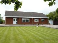 Detached Bungalow for sale in GRASMERE...