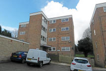 Flat to rent in Lanark Court, Eastbourne...
