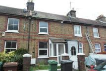 Fort Road Cottage to rent