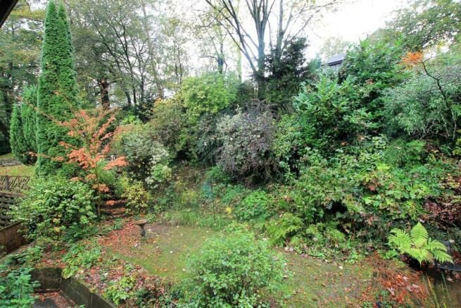 74 Rigby Lane garden 2.JPG