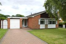 3 bedroom Detached Bungalow for sale in Campion Drive...
