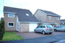 Detached home for sale in Falcon Way, Guisborough...