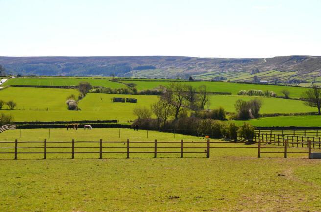 Fields & View