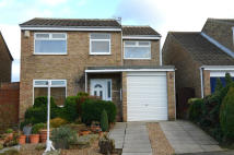 Detached property for sale in CATTISTOCK CLOSE...
