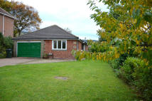 3 bed Detached Bungalow for sale in NEW PRICE, Belmangate...