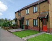 Terraced house to rent in Alnwick, Peterborough...