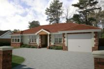 4 bedroom Detached Bungalow in Ashley Heath, Ringwood...