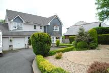 Bungalow for sale in Love Lane, Bodmin