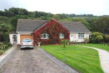 3 bed Bungalow for sale in Buzzacott Close...