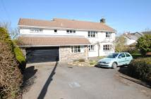 Detached property for sale in West Down Hill, West Down