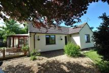 3 bed Bungalow for sale in Withycombe Lane...