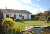 Bungalow for sale in Trerice Drive, Newquay