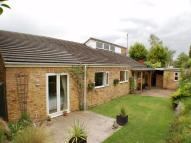 Detached Bungalow for sale in Danecote, Off Park Lane...