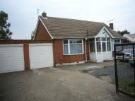 Detached Bungalow to rent in Dunstable Road, Luton...