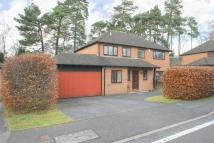 Detached house in Camberley, Surrey