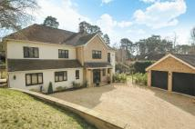 7 bed Detached house in Camberley, Surrey