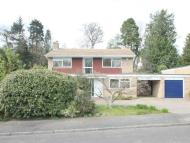 Camberley Detached property for sale