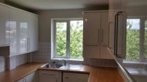 Bushey Road Flat to rent