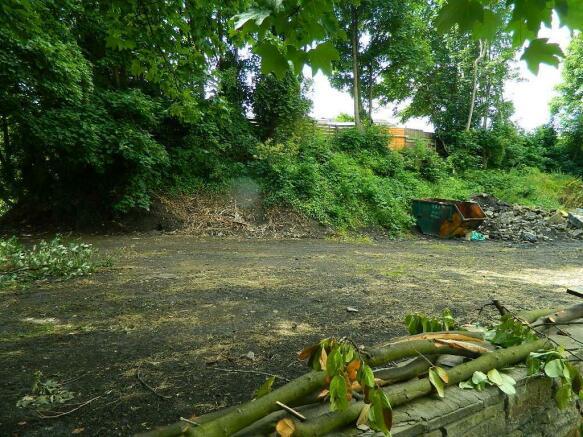 walnut tree farm 063