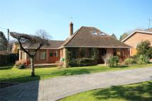Chalet in Woolhampton, READING...