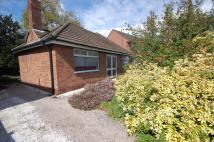 Detached Bungalow for sale in Morrell Road, Northenden...