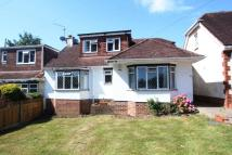 4 bedroom semi detached home for sale in Steep Close...