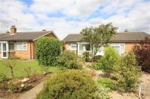 Bungalow for sale in Chestnut Close...