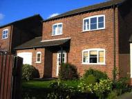 House Share in Ravensthorpe Drive...