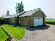 3 bedroom Detached Bungalow in School Road, Newborough...