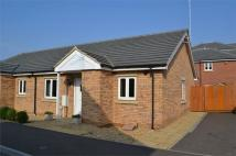 2 bed Semi-Detached Bungalow for sale in Whitby Avenue, Eye...