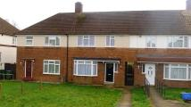 Terraced house to rent in High Grove, Plumstead...