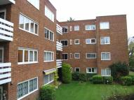 Flat for sale in Thorn Tree Court...